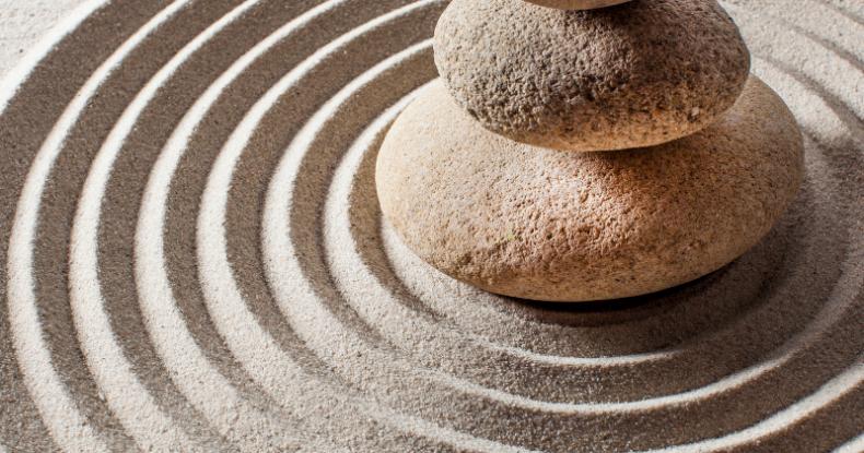 Mindful Awareness Part 1 Circumventing The Stress Response ~ Elizabeth Deboo, PT