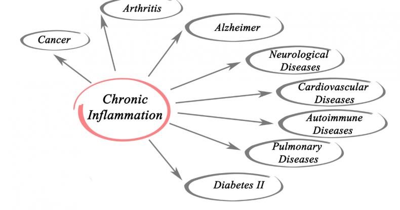 The Anti-inflammatory Lifestyle Diet
